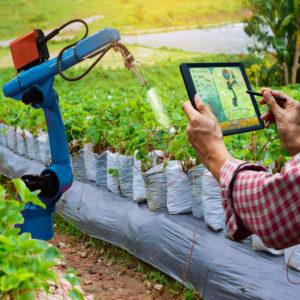 granty na rozwoj sektor rolno-spożywczy